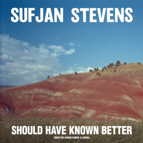 sufjan-stevens-should-have-known-better